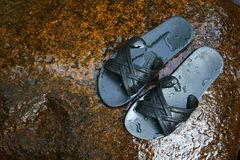 Sandals on the Wet Rock Stock Photos