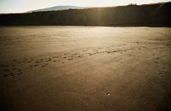 Black sandy in sunset. Northern royalty free stock images