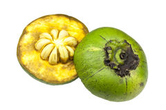 Black Sapote Royalty Free Stock Image