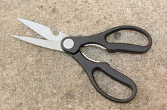 Black scissors Stock Images