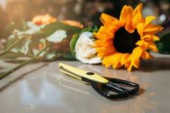 Black scissors on grey table against sunflower Royalty Free Stock Photo