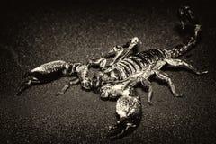 Black scorpion isolated on black background.  stock images