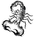 Black scorpion Royalty Free Stock Image