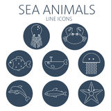 Black sea animal set in outlines. With octopus, crab, fish, penguin, shark, whale, jellyfish and starfish. Digital vector image Royalty Free Stock Images