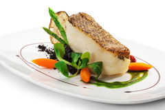 Black Sea Bass Stock Image