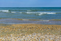 Black sea beach full of shelves. Beach on the Black sea full of shelves royalty free stock photography