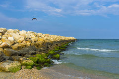 Black sea coast in Romania. Black sea coast in Constanta, Romania royalty free stock photo