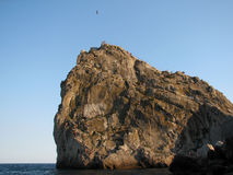 Black Sea Coast Simeiz Crimea  the mountain cat Royalty Free Stock Photo