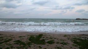 Black Sea coast at sunset stock video footage