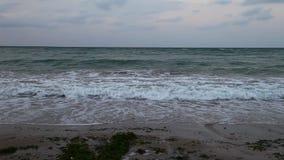 Black Sea coast at sunset stock video