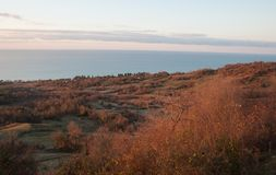 Black Sea i Abchazien Royaltyfri Foto