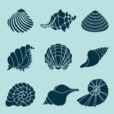 Black sea shells. Set of various sea shells and starfish silhouettes Royalty Free Stock Photo