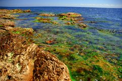 Black sea shore in colors #2 Royalty Free Stock Photo