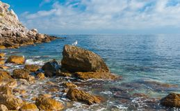 Black sea shore at spring season Royalty Free Stock Image