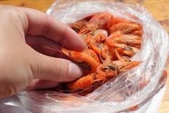 Black Sea shrimp. Woman shows the quality of shrimp. close-up Royalty Free Stock Photo
