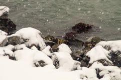 Black Sea snowfall in Pomorie, Bulgaria Stock Photography