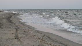 Black Sea waves stock video footage