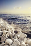 Black Sea winter Royalty Free Stock Photography