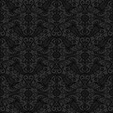 Black seamless lace pattern Royalty Free Stock Photography