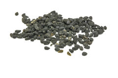 Black Seed Spice Stock Image