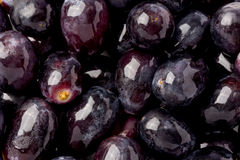 Black Seedless Grapes stock photography