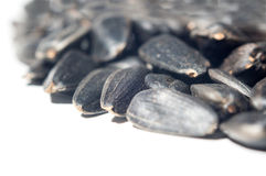 Black seeds Stock Photography