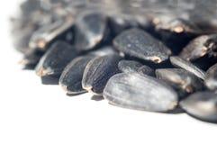 Black seeds Stock Photography