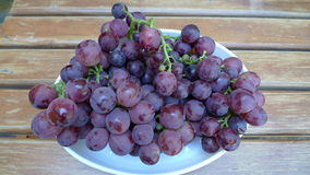 Black sergeant plate of grapes from Bozcaada Royalty Free Stock Photo