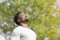 Free Black Serious Man Breathing Fresh Air In A Park Stock Images - 177761904