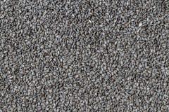 Black sesame seed for background Stock Image