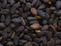 Black sesame seeds Stock Image
