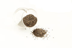 Black sesame seeds in a glass bottle. Some drop on the floor Royalty Free Stock Photography