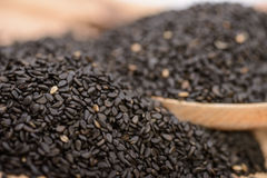 Black sesame seeds Royalty Free Stock Images