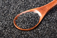 Black sesame in the wooden spoon Royalty Free Stock Photo
