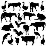 Black set silhouettes zoo animals collection on Stock Photos
