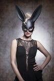 Black, sexy rabbit Royalty Free Stock Photography