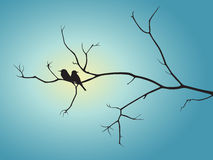 Black shadow bird and tree branch on blue sun light vector design Royalty Free Stock Photo