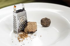 Black shaved truffles on a plate. And a mini grater Stock Image