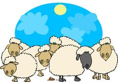 Black sheep. This illustration depicts 5 white sheep & one black sheep with droppings Stock Image