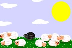Black sheep Stock Photos