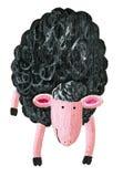 Black sheep. Acrylic illustration of  black sheep Stock Images