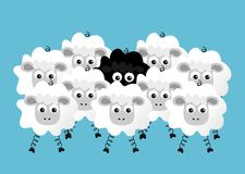 Black sheep. Illustration of flock of sheep on blue background Stock Photo