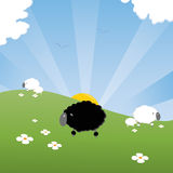 Black sheep. Of the family , cartoon styled Royalty Free Stock Photography