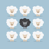 Black sheep in the crowd Stock Images