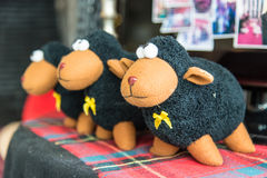 Black sheep doll Stock Photo