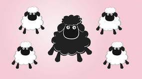 Black sheep in the family Stock Images