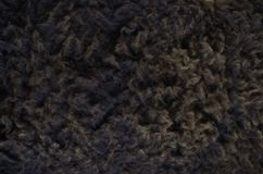 Black sheep fur Stock Photo