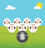 Black Sheep with Leadership Situation Royalty Free Stock Photography