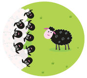 Black sheep is lonely in the middle of white sheep. Stylized  illustration of sheep family. The black sheep is different and is standing alone. Vector Royalty Free Stock Images