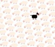 Black Sheep Among White Flock Royalty Free Stock Image